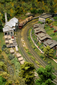 Swandale on the Buffalo Creek and Gauley Railroad