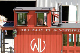 Arborway, T.T. & Northwestern Railroad