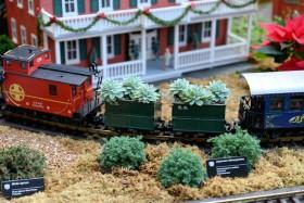 "2014 Missouri Botanical Garden ""Gardenland Express"" Garden Railroad"