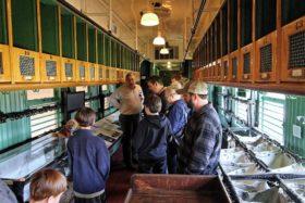 The Railpark Train Museum